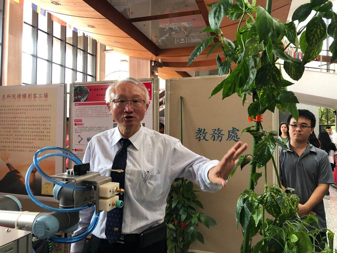 嘉義大學校長艾群帶領生機系學生,研發出甜椒栽培植保機器人。記者李承穎/攝影