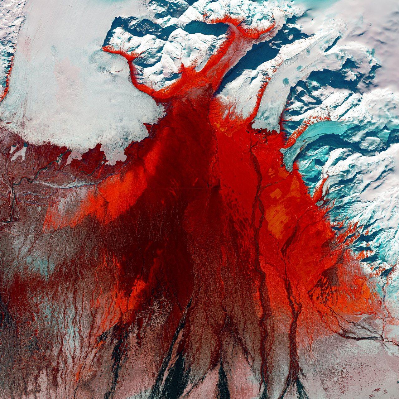 冰島看似光禿沒有植物的冰川,其實充滿著綠色生命。搶眼的鮮紅色代表著被苔蘚、樺樹灌...