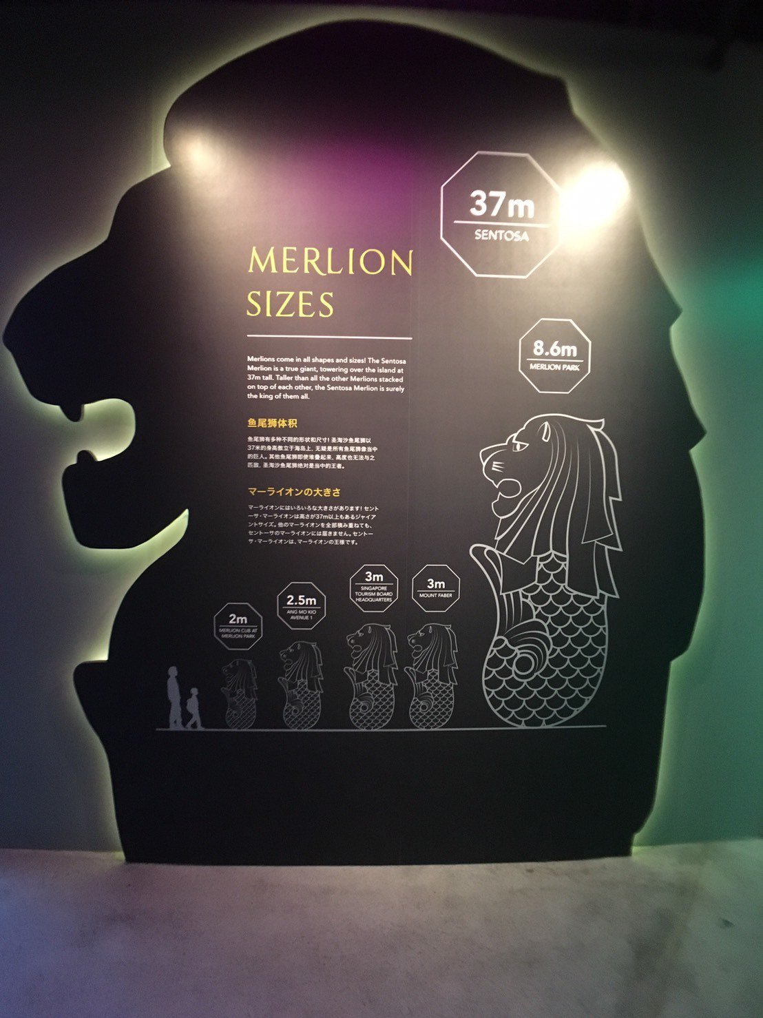 新加玻聖淘沙魚尾獅塔牆面上有新加坡每一隻魚尾獅各種大小尺寸介紹。記者張雅婷/攝影