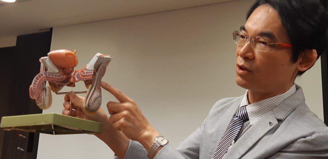 書田診所泌尿科主任醫師洪峻澤提醒,睪丸大小硬度與性功能無關,年輕男性發現睪丸忽然...