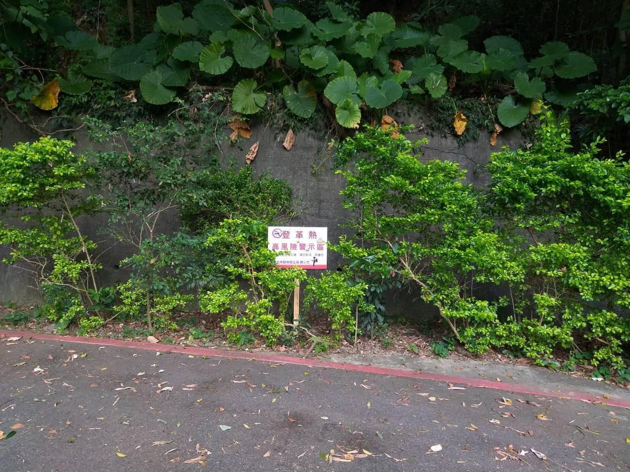 新北市樹林區已累積5例登革熱案例,衛生局除持續針對坡内里風險菜園噴消孳清外,也在...