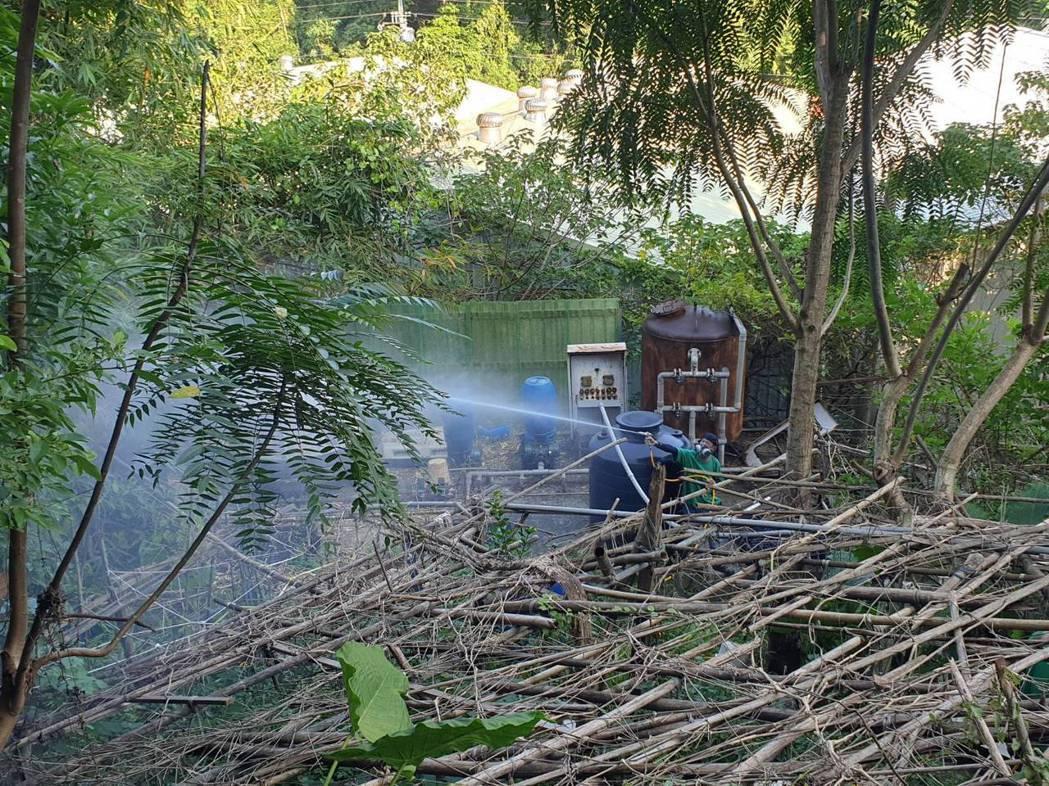 新北市樹林區已累積5例登革熱案例,衛生局持續針對坡内里風險菜園噴消孳清。圖/新北...