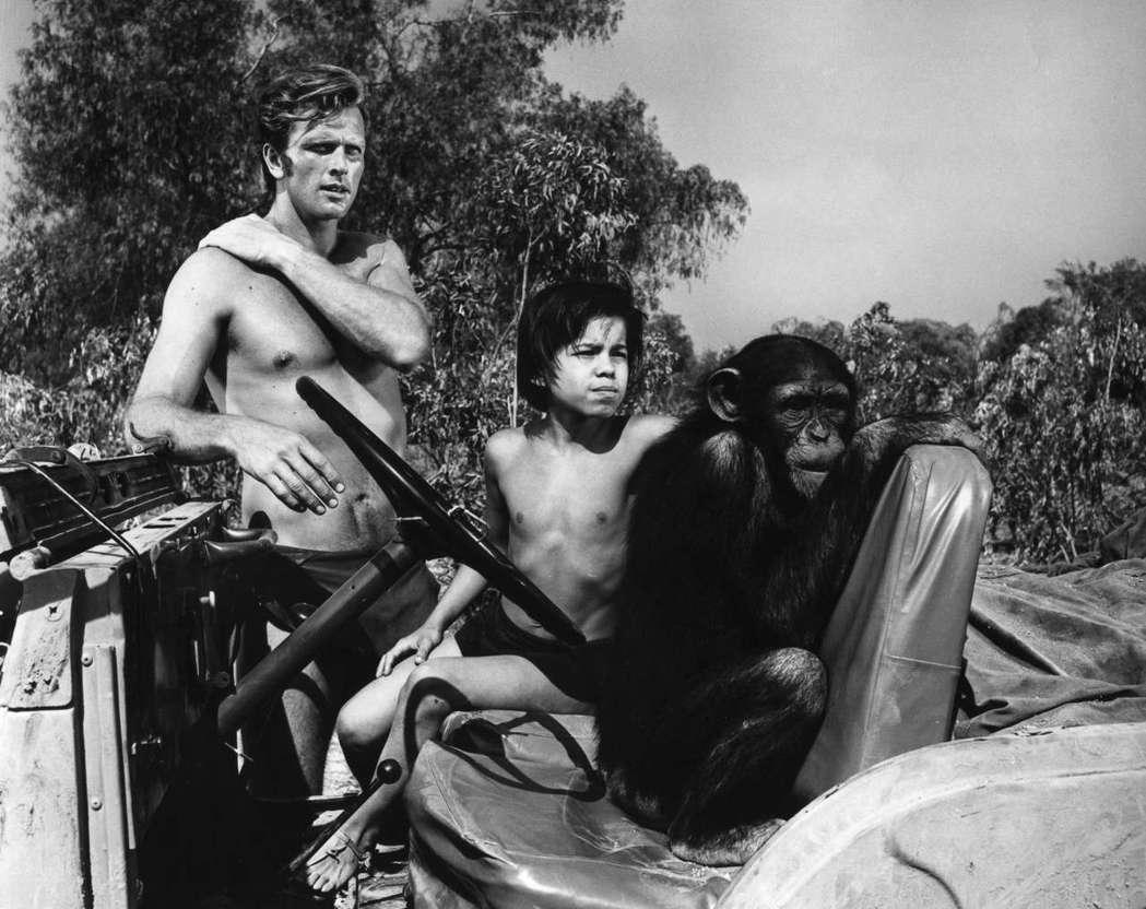 隆伊利(左)因演出「泰山」影集走紅。圖/達志影像