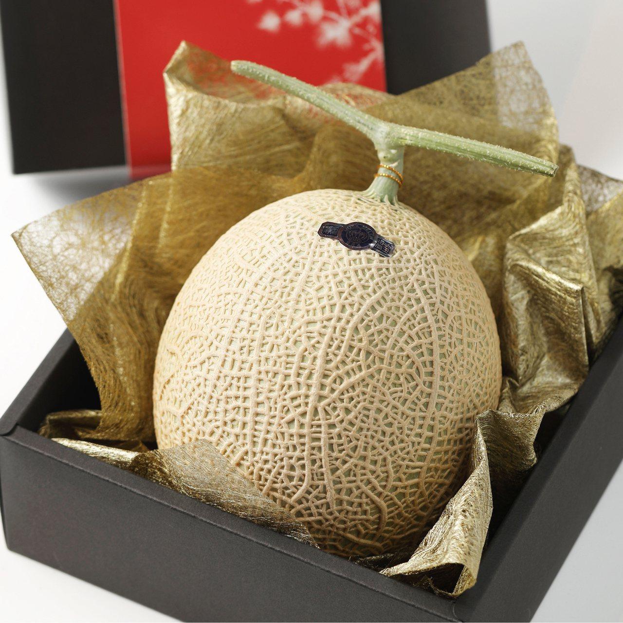 日本皇室御用的靜岡皇冠哈密瓜,甜度達15~20,單顆售價2,000元。圖/樂軒提...