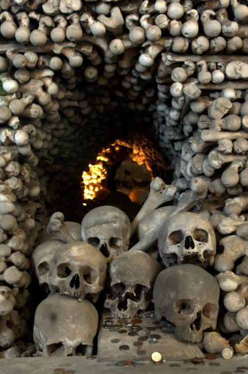 這些人骨大多來自14世紀黑死病和戰爭中的死者。Getty Images