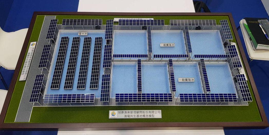 旭康漁業管理顧問公司在展場內展出漁電共生系統模組。 李福忠/攝影