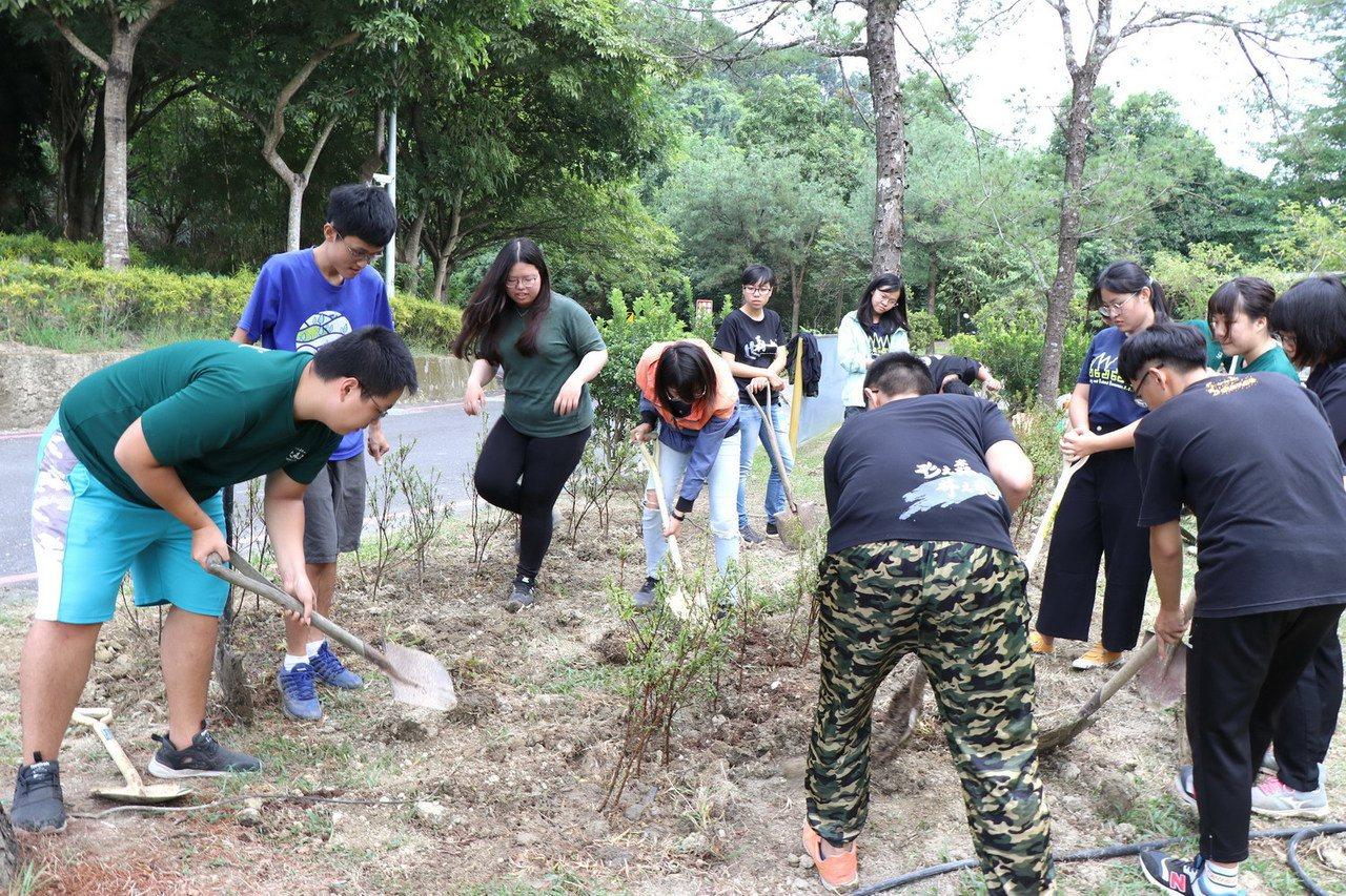 嘉大森林學系林瑞進老師帶領學生將新北市政府贈送的百株烏來杜鵑,種在嘉大植物園。圖...
