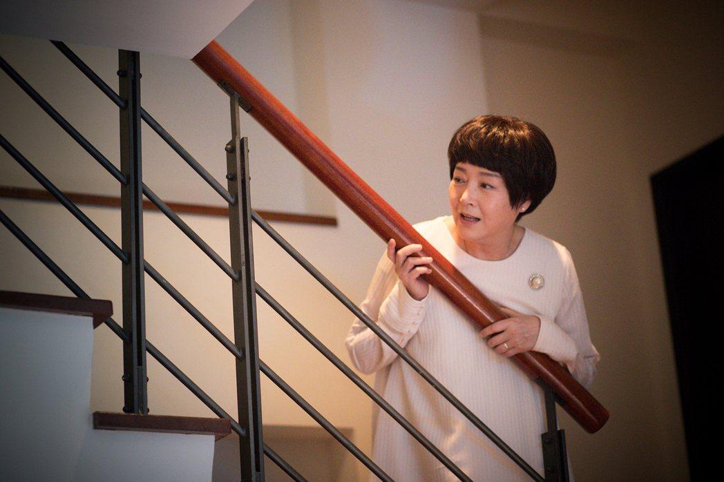 恬妞在「傻傻愛你,傻傻愛我」有非常動人的演出。圖/華映提供