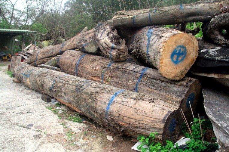 民眾爆料台北市立內湖高工以學校名義,向新竹林管處購買申請使用漂流木,引發弊案疑慮...