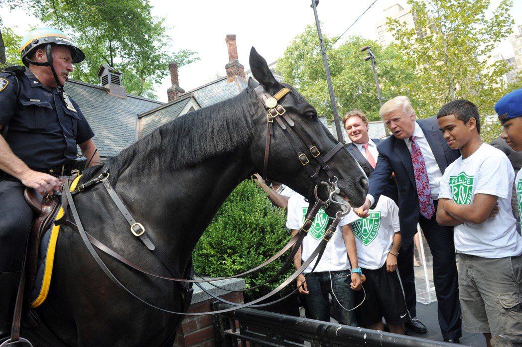 美國總統川普雖然沒有在馬背上的照片,但他被拍到試圖餵馬。 (美聯社)