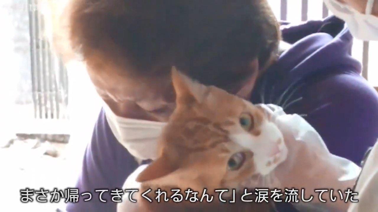 日本一名64歲女士和3歲愛貓Moko在颱風天都獲救,但Moko疑受驚過度逃走後不...