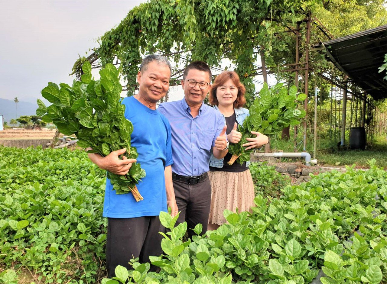 在競爭激烈的花卉市場上,多數花農種植高經濟價值的蘭花、菊花、玫瑰等主流花卉,屏東...