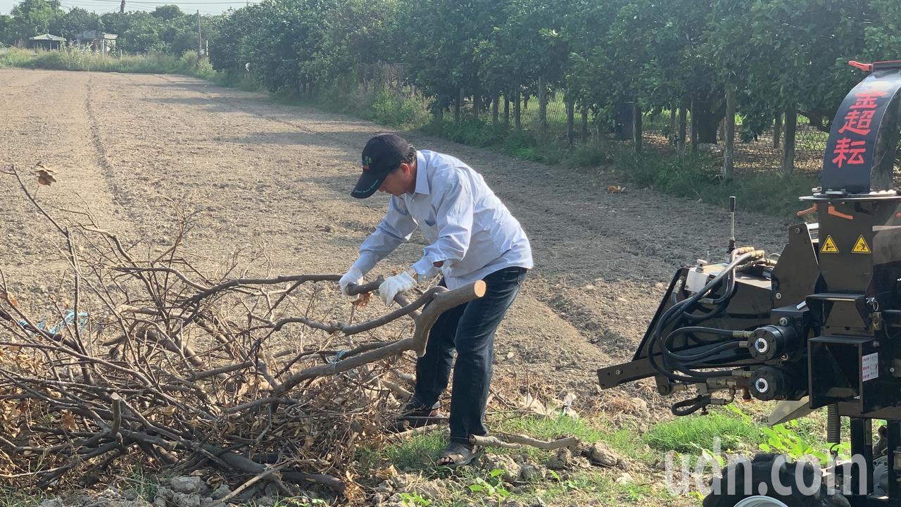 每年果樹修枝條處理,對農民都是一大困擾。記者吳淑玲/攝影