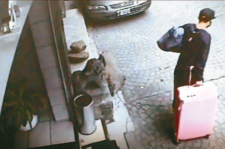 陳同佳來台殺害女友後,將遺體裝入粉紅色行李箱棄屍。 記者林孟潔/翻攝