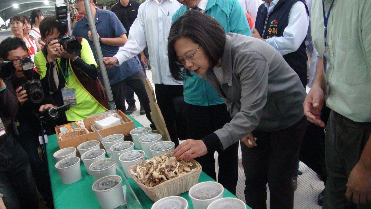 總統蔡英文進行揭牌儀式後,到現場的農特產品攤位參觀與試吃。記者余采瀅/攝影