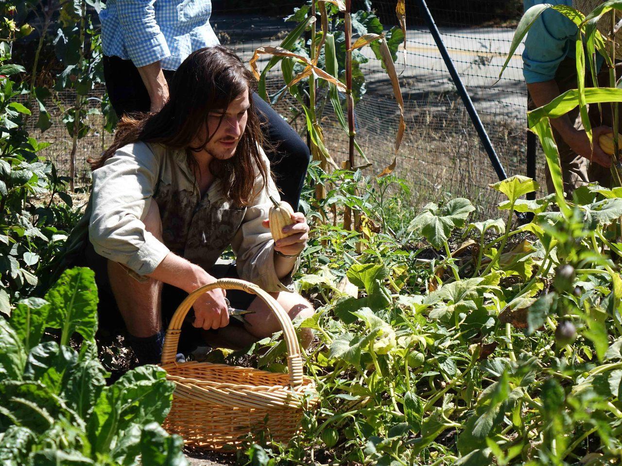 《農村的遠見》第二季的〈美國舊金山 有機生活美學〉,聚焦美國舊金山Bi-rite...