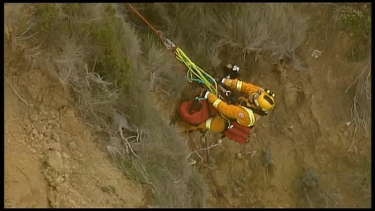 澳洲一隻邊境牧羊犬「吉米」20日不小心,受困維多利亞省知名衝浪聖地「貝爾斯海灘」...