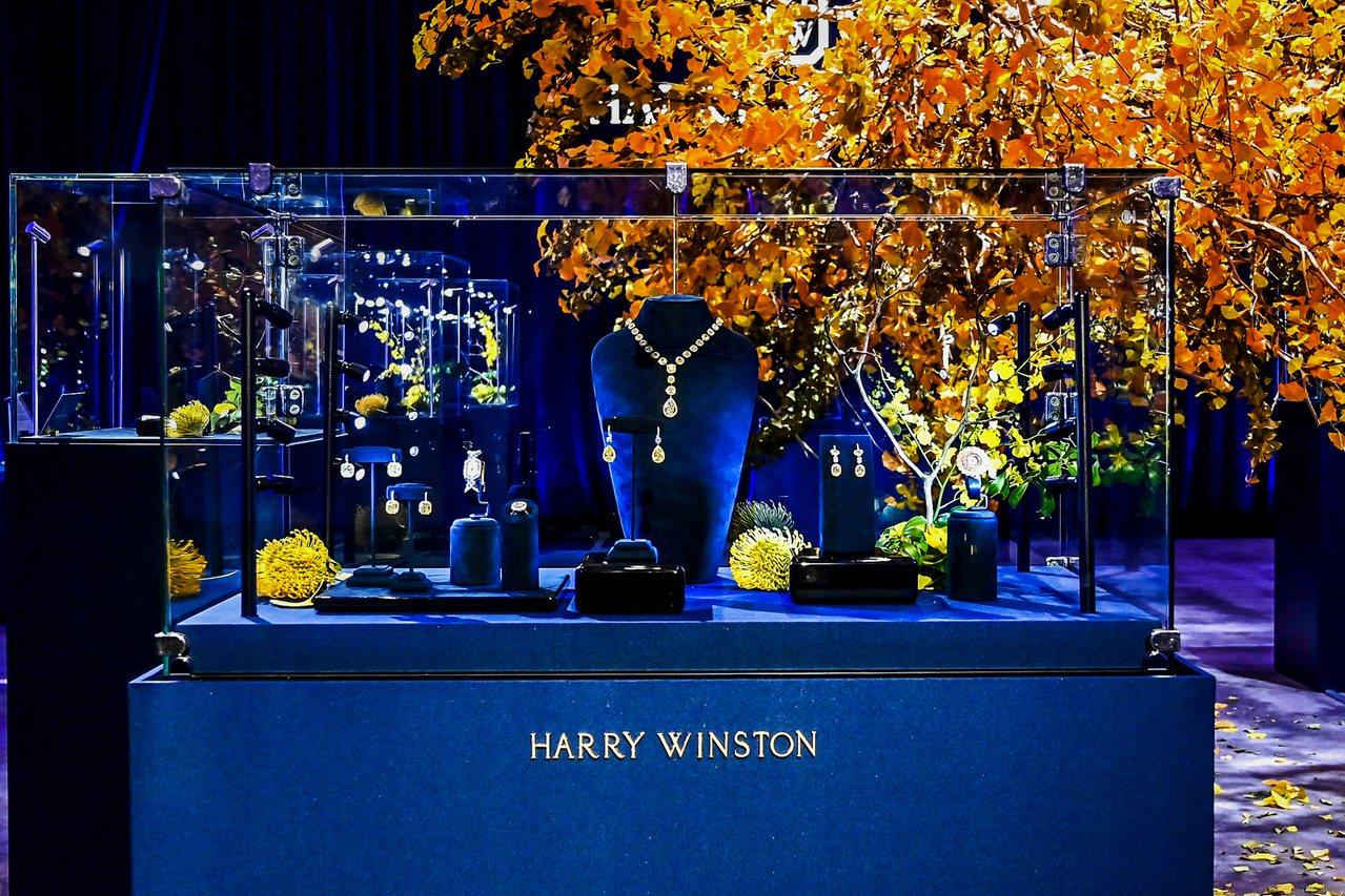 海瑞溫斯頓帶來超過100件,總計超過1,400克拉的黃鑽展示。圖/海瑞溫斯頓提供