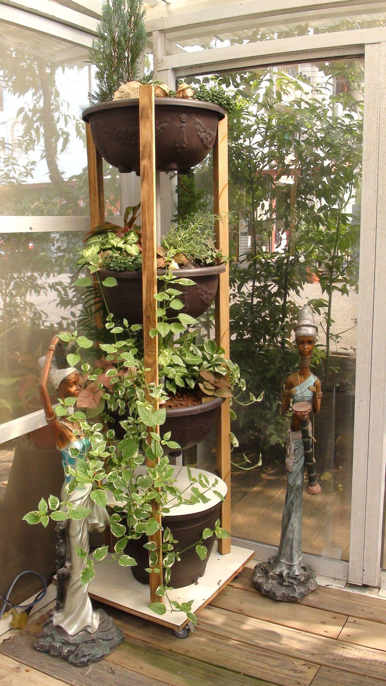 魚菜共生系統現在也開發出層架型,在居家一隅建置,就能養魚,種菜或種花。記者王昭月...