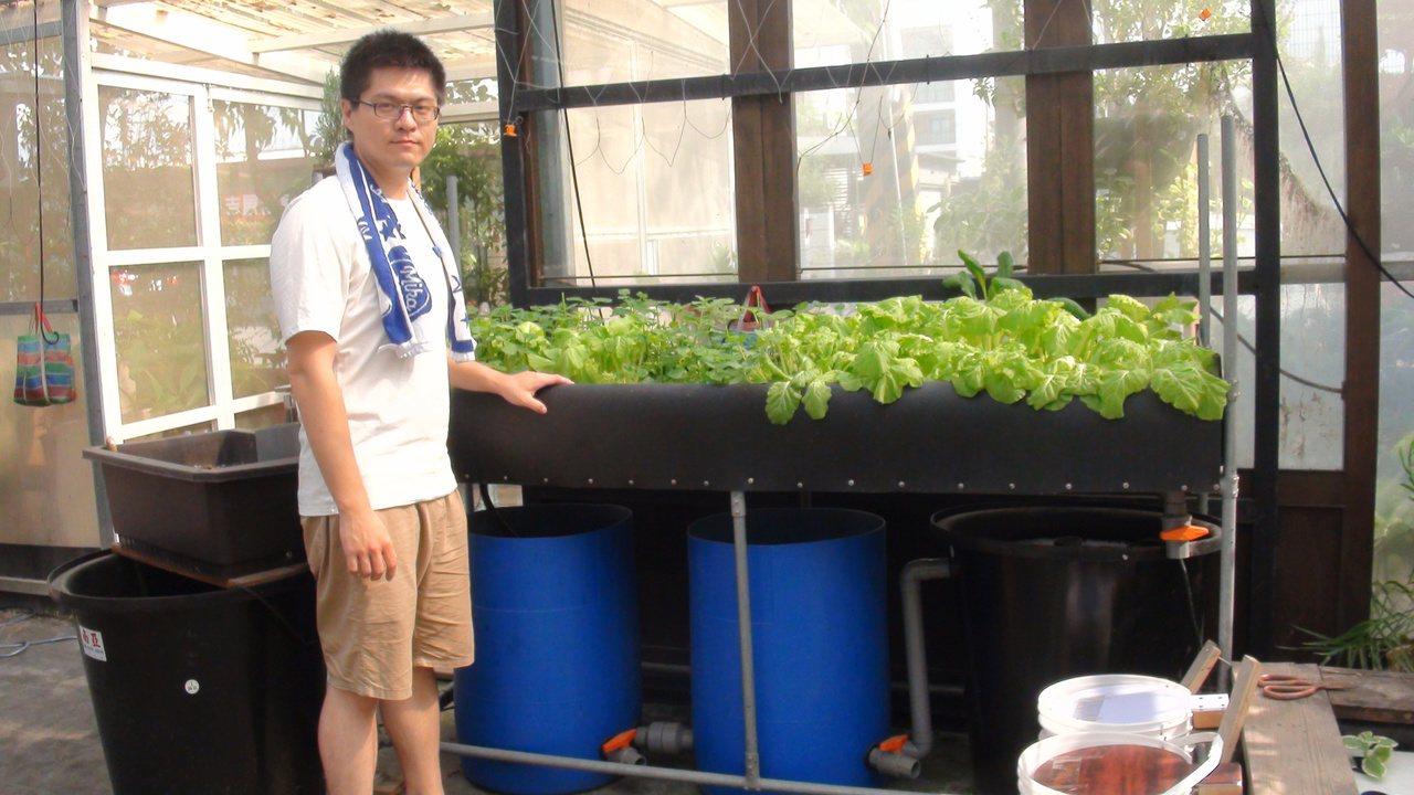居家陽台只要有1.8米的空間,就能建置魚菜共生系統。記者王昭月/攝影