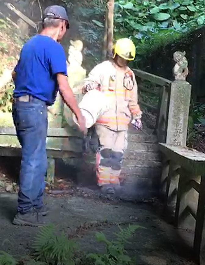 基隆市中正公園今天下午傳出火光,消防人員急忙上山,發現江男點火燃燒枯葉,及時撲滅...