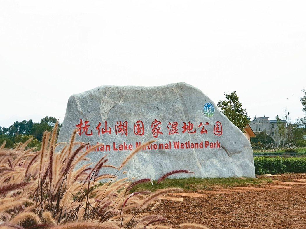 撫仙湖溼地公園,著重生態保護。 圖/本報澄江傳真