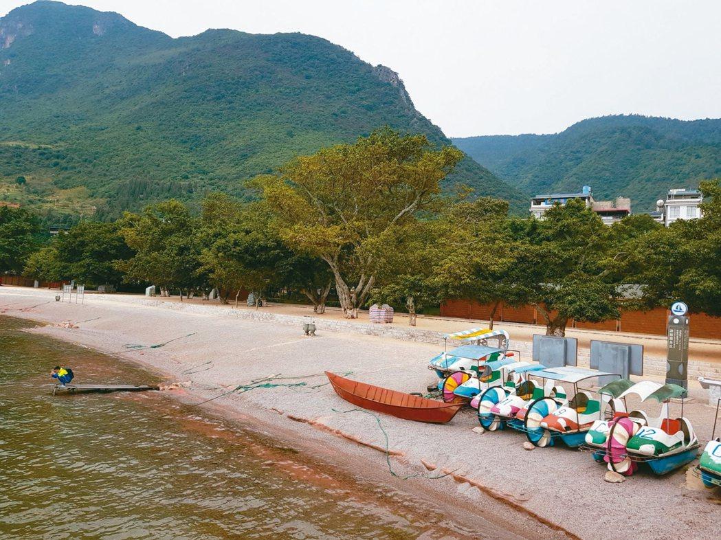 金沙灘邊,傍以成排榕樹。 圖/本報澄江傳真