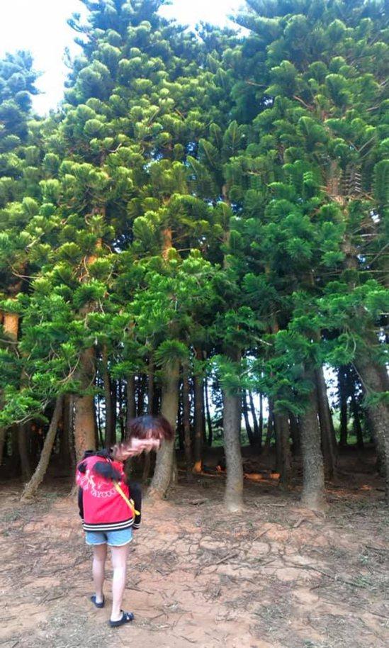只見女子站在綠意盎然的樹前,頭直接被裁一半,上半臉雖然有臉部正面的瀏海、眉毛,但...