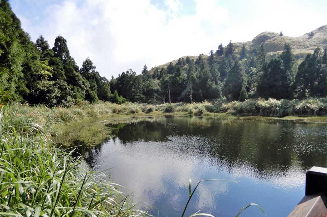 台北/陽明山夢幻湖,山林間的綠寶石