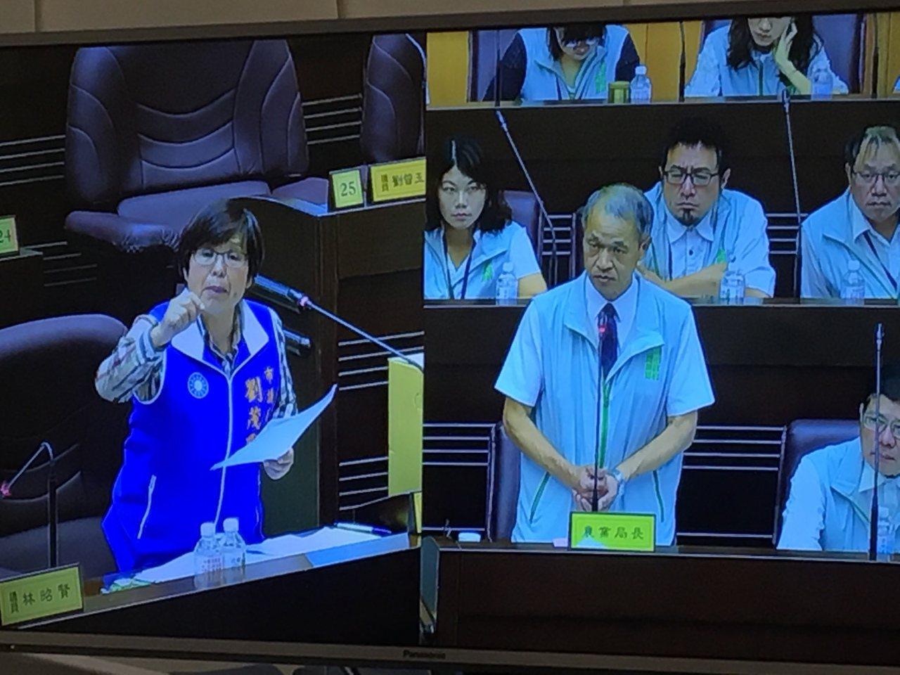 市議員劉茂群(左)質詢農業局長郭承泉(右),指出很多市民、學生與社團都是市府安排...