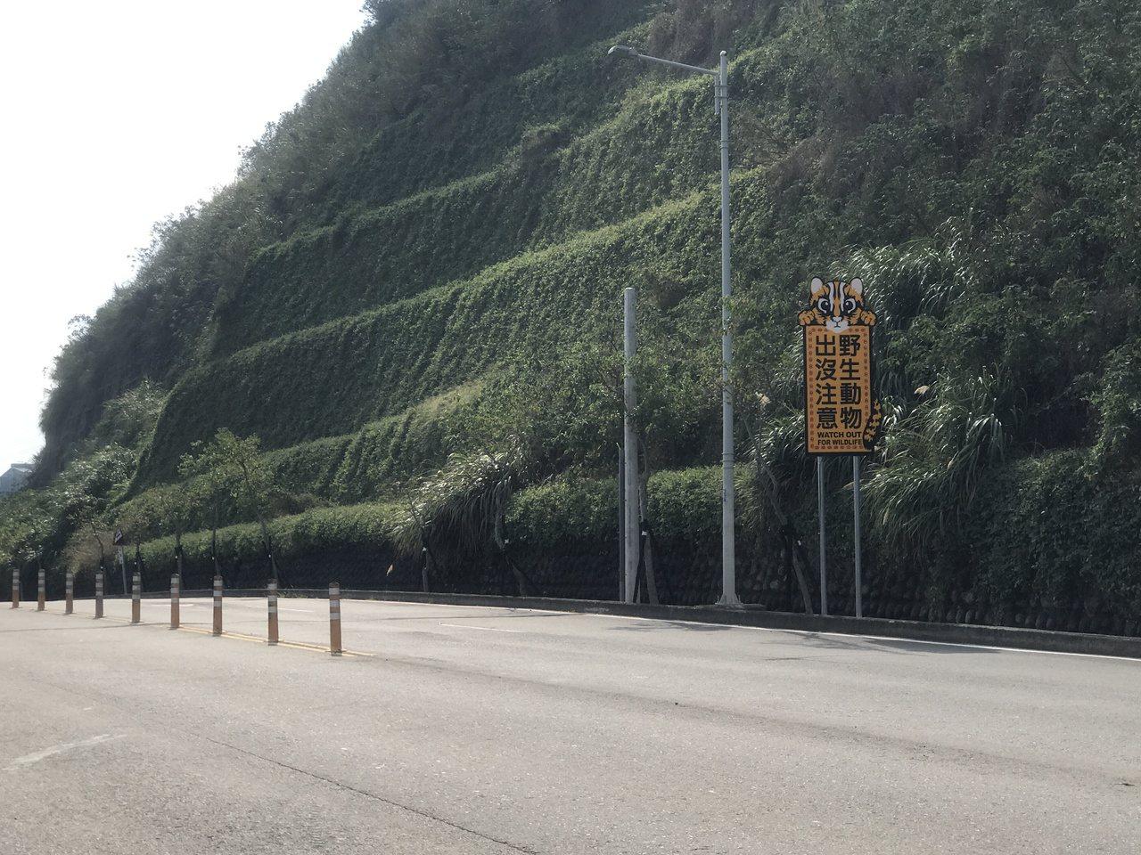 苗縣府在苗29線設置「野生動物出沒注意」告示牌,提醒民眾該路段有石虎出沒。記者劉...