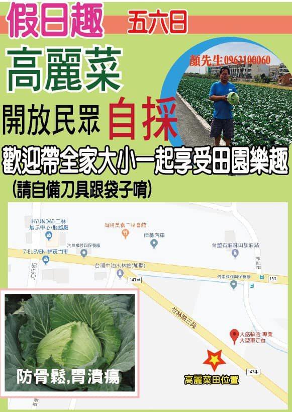 二林菜農開放自家菜園供民眾自行採收,節省人力與包裝成本。記者林敬家/翻攝