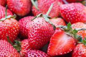草莓無論中英文都叫「莓」,但事實上竟然是一場誤會?