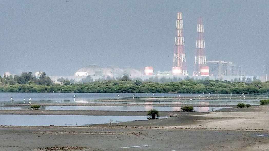 鳥友赴高雄永安濕地拍鳥,意外發現台電興達電廠旁的濕地幾乎乾涸見底,影響鳥類棲息。...