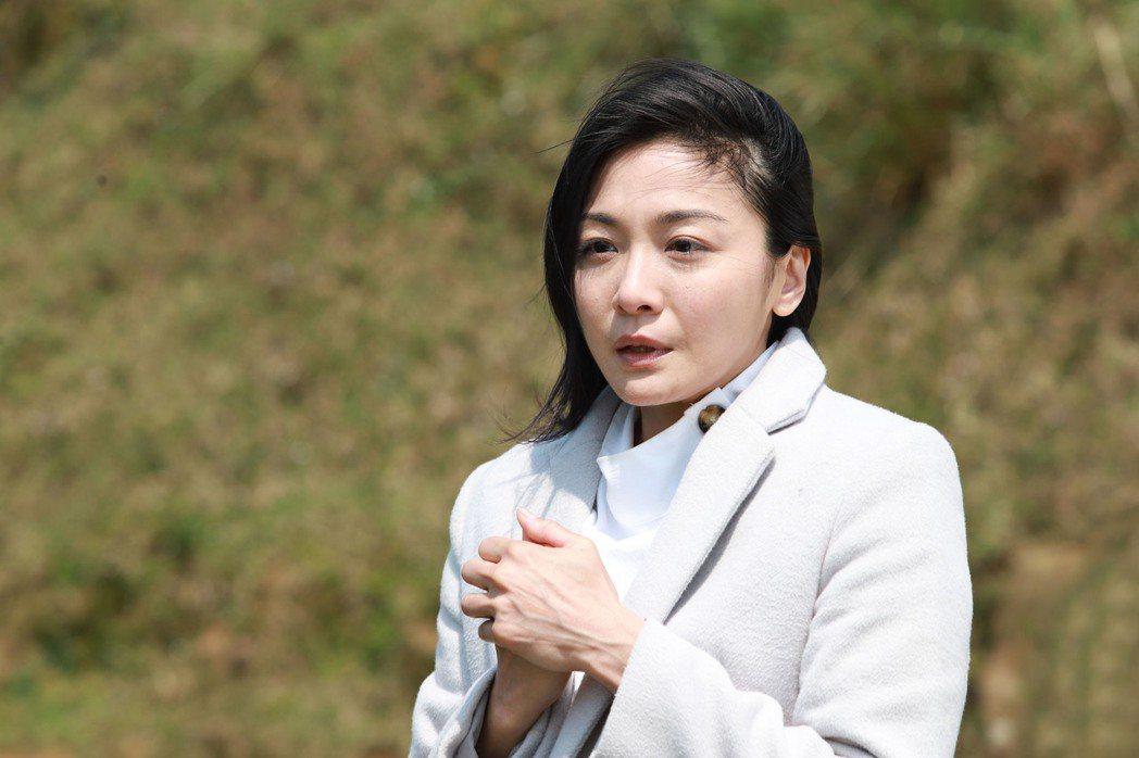 江祖平在「大時代」中飾演命運坎坷的楊幸美。圖/民視提供