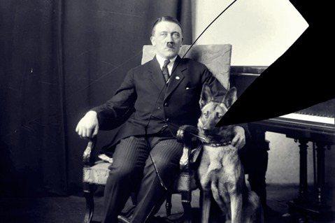 「我有一個大膽的想法,而你...服從嗎?」圖為希特勒與他的狗。 圖/美國國家檔案...