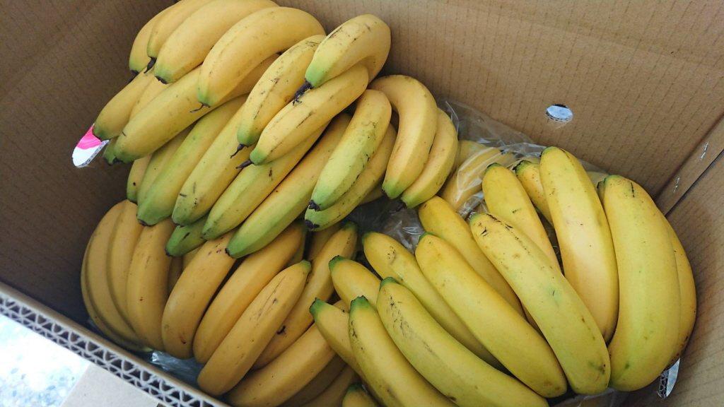 香蕉。 聯合報系資料照片/記者卜敏正攝影