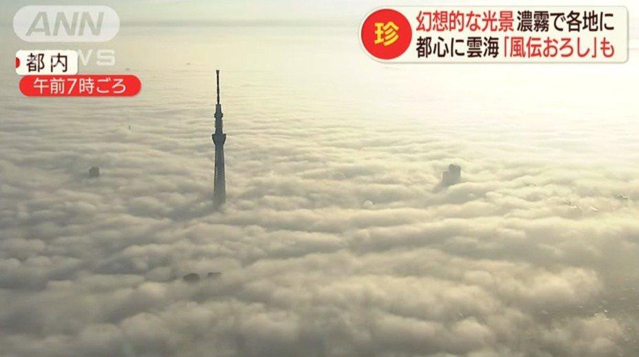 受到強烈的輻射冷卻效應影響,東京都市中心當日早晨氣溫僅攝氏12.1度,創下今年入秋以來最低紀錄,也導致濃霧湧現、高空被廣闊雲海籠罩,眾多高樓大廈被厚重白色布幔遮掩般隱沒其中,唯獨晴空塔高聳的身影清晰可見。畫面翻攝:Youtube/ANNnewsCH