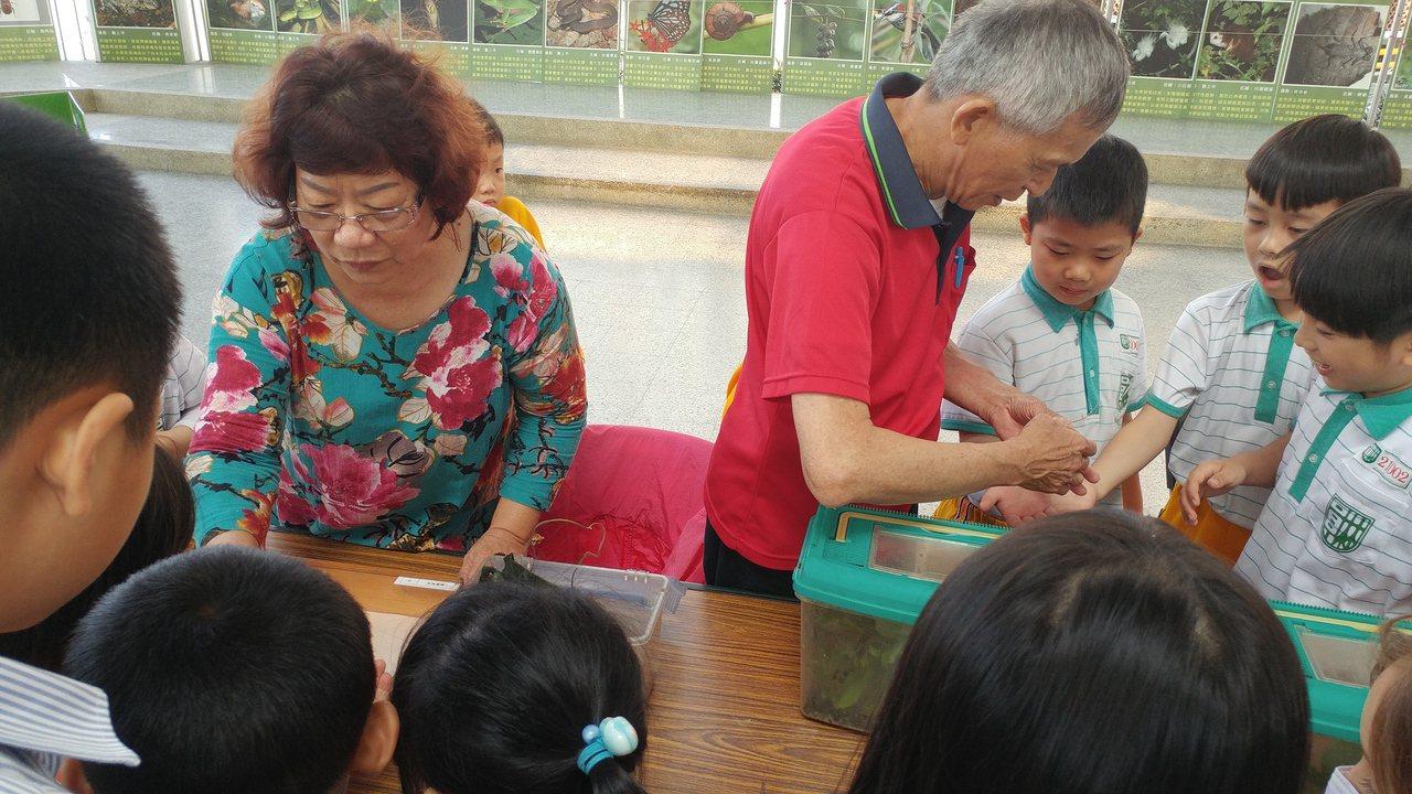 熱愛昆蟲的埔心鄉民張勝美(左)花了5年多時間復育皇蛾,並製作標本。圖/劉華山提供