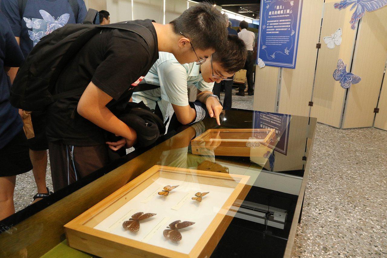 興大、科博館合辦「興潮蝶起‧BetterFly」特展,展區以時間軸貫穿蝴蝶的過去...
