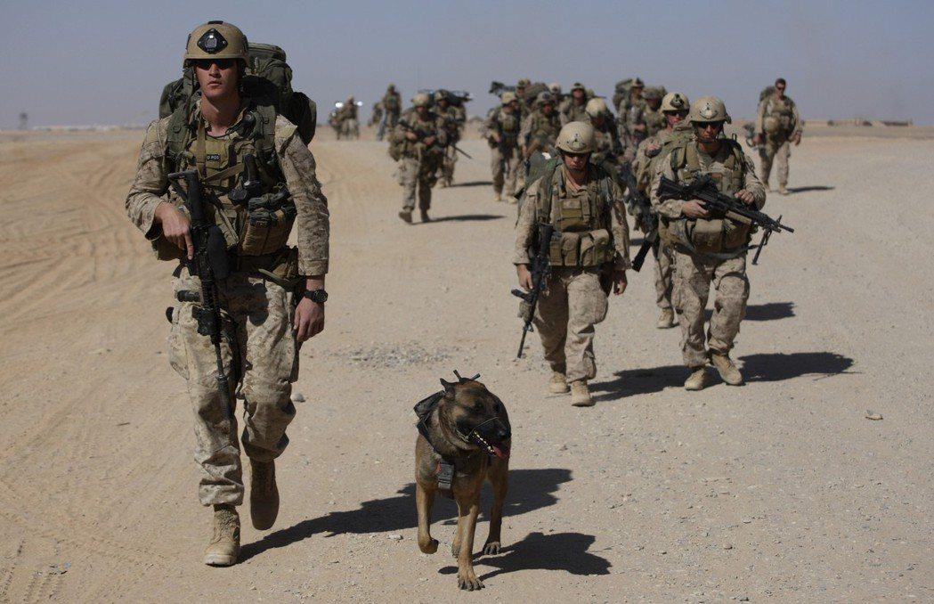 美軍陸戰隊在阿富汗出任務,很仰賴嗅彈犬。 (美聯社資料照片)