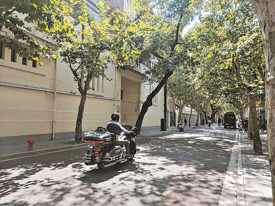 上海的法租界區綠樹成蔭,走訪起來相當舒服。圖/陳昭妤