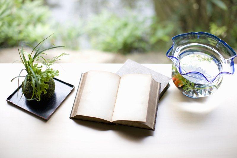 我們很難經歷別人的人生,但是透過書本,我們可以。示意圖/ingimage