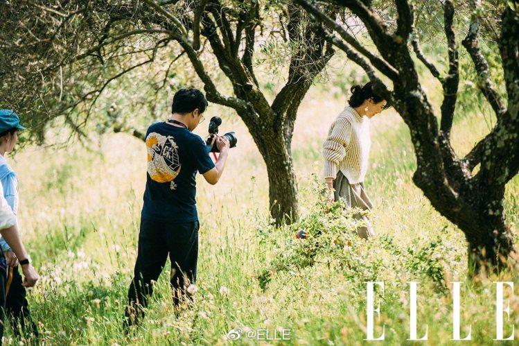 章子怡身穿Chloé的2019秋冬系列拍拍攝雜誌照片。圖/取自ELLE中國版微博