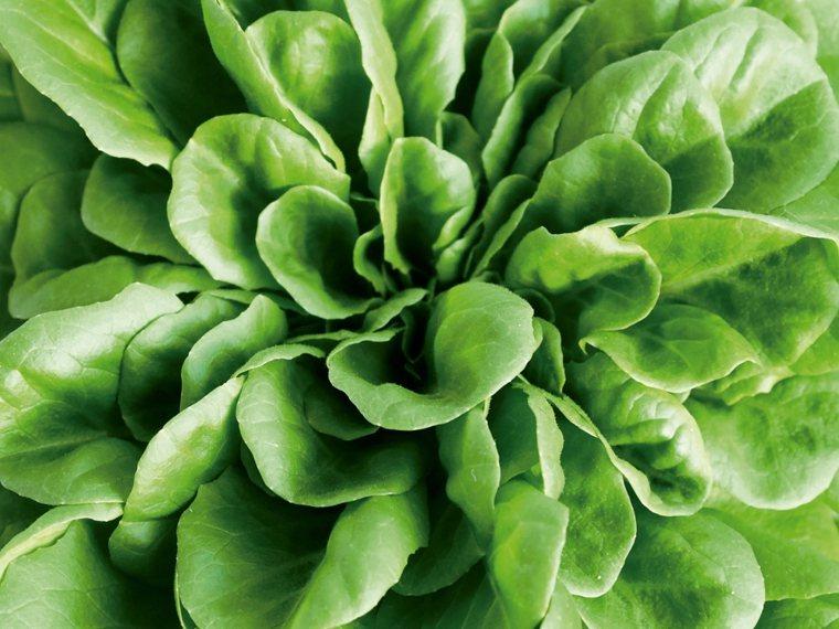 綠葉蔬菜+橄欖油將蔬菜與健康油脂一起吃,可增強葉黃素和β-胡蘿蔔素等抗氧化劑...