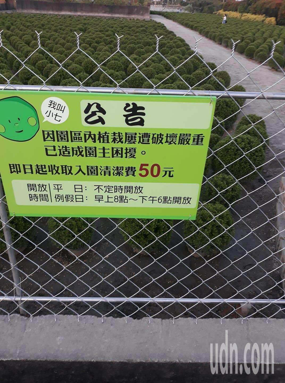 彰化田尾「台版波波草」因爆紅受到破壞,這個周末起收費。記者林敬家/翻攝