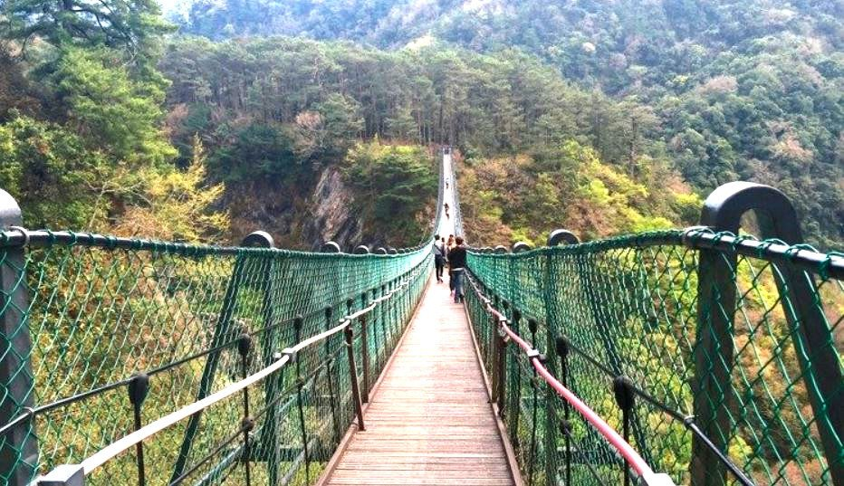 南投縣仁愛鄉奧萬大森林遊樂區今下午傳孩童墜橋意外,2歲童跌落80米溪床宣告不治。...