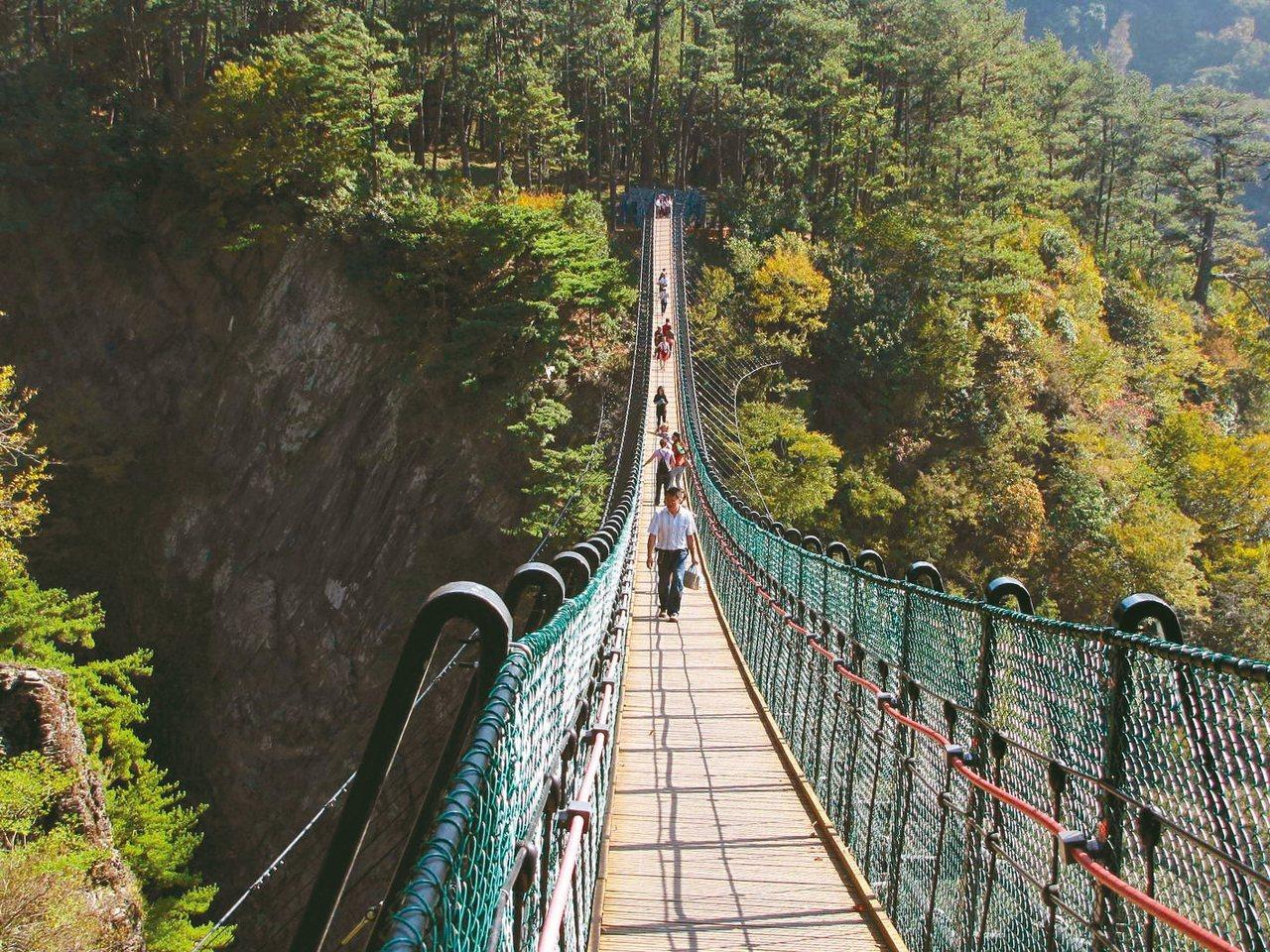 南投縣奧萬大吊橋10年前啟用,橋距溪床約70至80公尺,是縣內最高天空之橋。 圖...