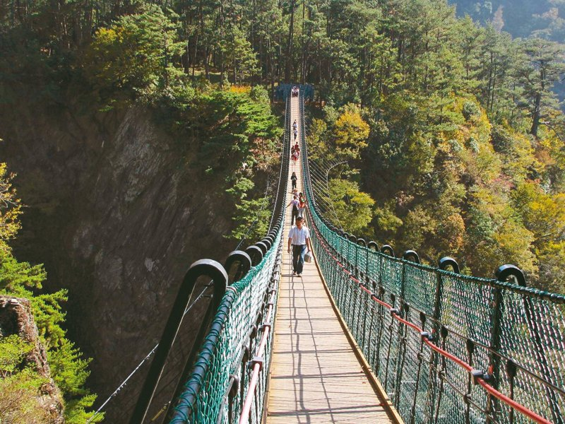 南投縣奧萬大吊橋10年前啟用,橋距溪床約70至80公尺,是縣內最高天空之橋。 圖/聯合報系資料照片