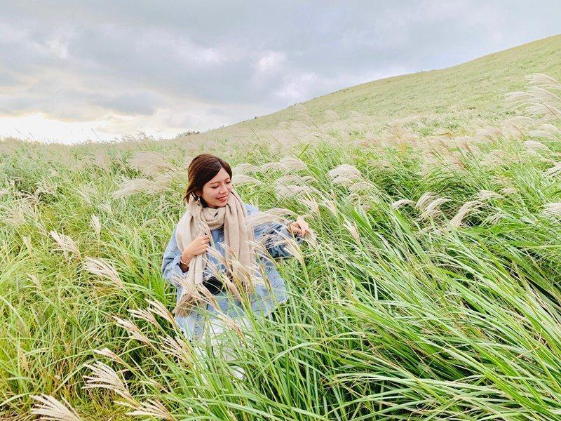 曉星岳有大片的芒草,隨手拍都是網美照 圖/張芳瑜攝影